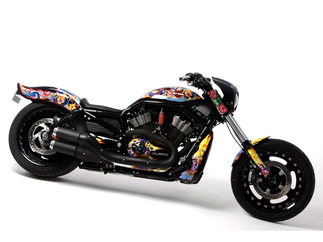 Harley-Davidson Night Road Special (Animals in the Wild)